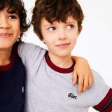 Lacoste Boys Crewneck Contrast-Stripe Cotton T-Shirt