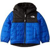 The North Face Kids Reversible Mount Chimborazo Hoodie (Toddler)