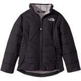 The North Face Kids All Season Insulated Jacket (Little Kids/Big Kids)
